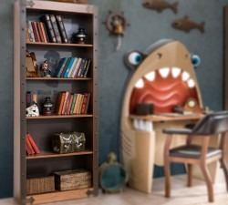Black-Pirate-Bookcase2