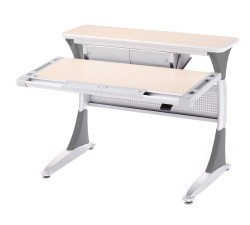 Ergo-Large-Study-Desk2
