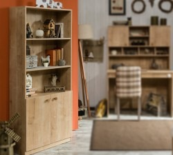Mocha-Bookcase2
