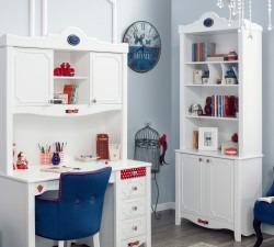Strawberry-Bookcase2